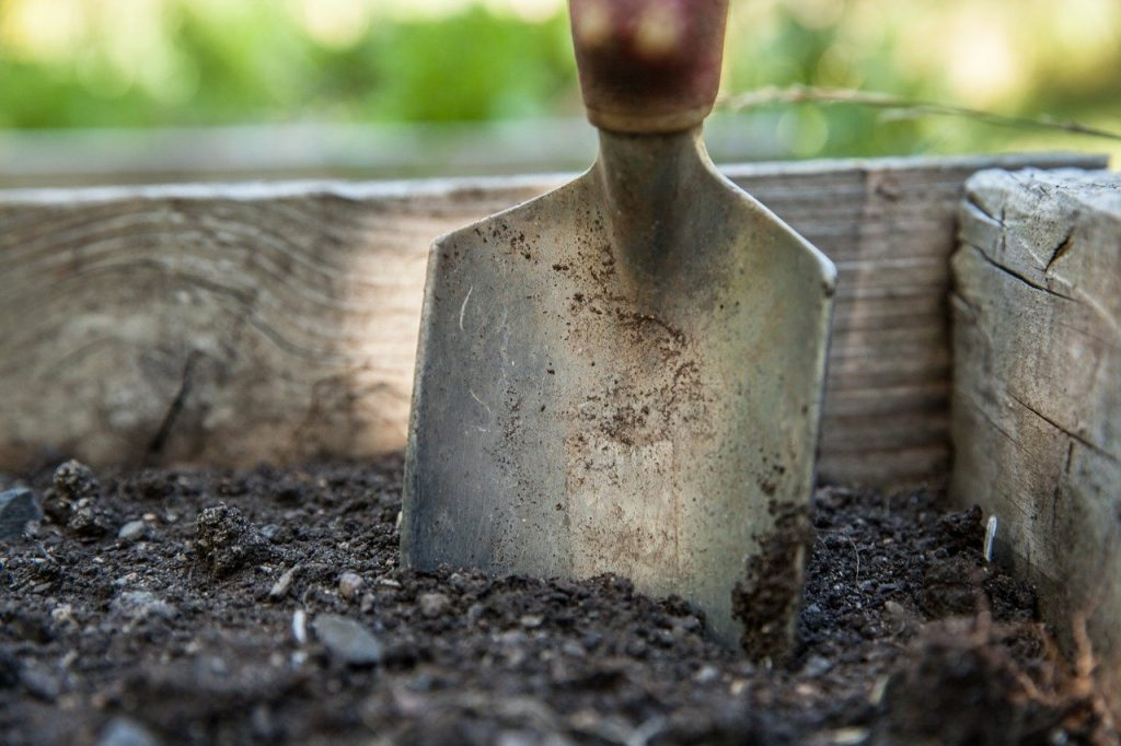 soil in a box with a small hand shovel