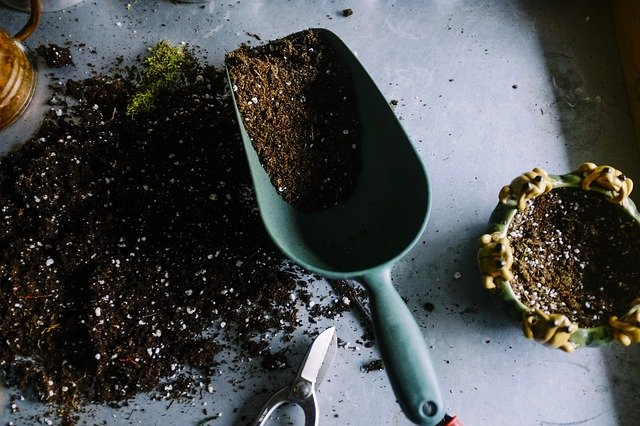 Reliable Potting Soil Mixes You Can Make Yourself