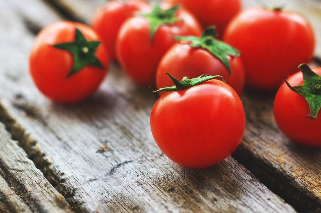 Growing a Defiant tomato in containers