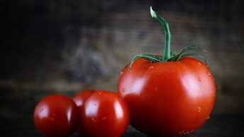 Growing different tomatoes