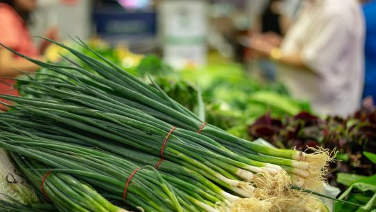 Green onions on counter