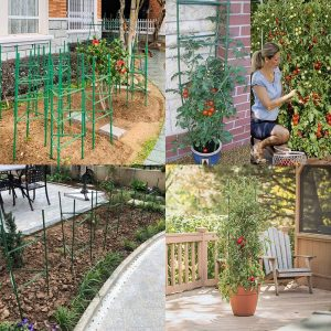 Tomato Cage 3 Pack, IDMAX Assembled Plant Climbing Frame for Growing Vegetables and Fruits Garden Plant Support Stakes Flower Beds Balcony Gardening Cucumber Trellis